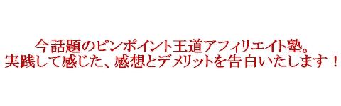 キャッチコピー塾用2.jpg